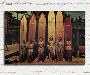 quadro madeira pinus longboard